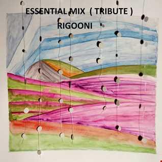 The essential RIGOONI ( Tribute)