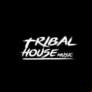 Tribal House Vol2