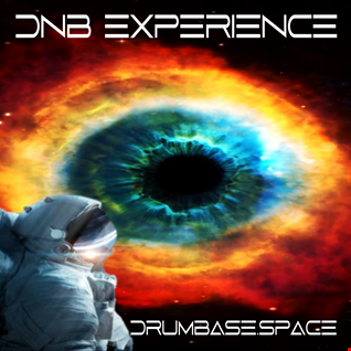 dnb experience 17042021