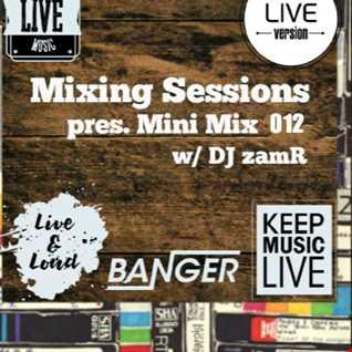 DJ zamR   Mixing Sessions pres. Mini Mix 012