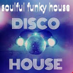 DJ ARI'S STYLE SUMMER SOULFUL DISCO FUNKY HOUSE PARTY FUN