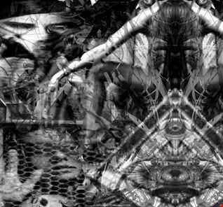 Nemesis dnb Inflicted