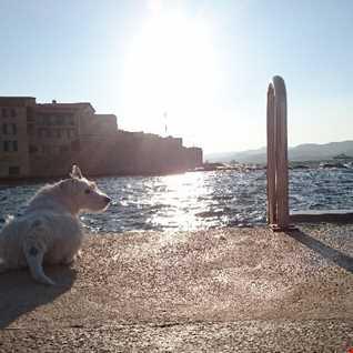 Señor La Roca's Aural Sunshine Sessions 2018 #2