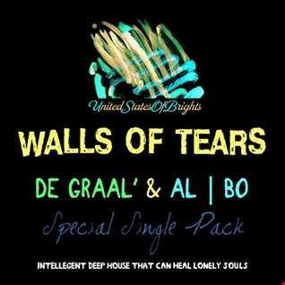 DE GRAAL' feat. al l bo - Walls Of Tears (original mix)