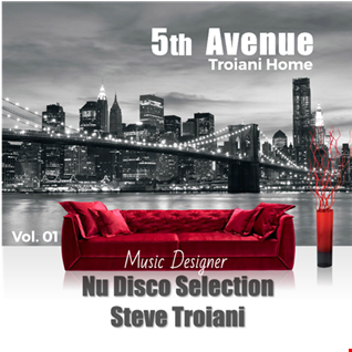 5th AVENUE - NU DISCO Troiani Home - Vol. 01 Steve Troiani