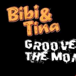 groove of the monkey (bibi und tina soundtrack) (Calectro Bootleg Remix)