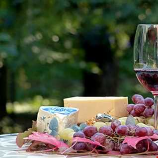 Wine and Cheese House