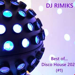 Best of ... Disco House 2020 (#1)