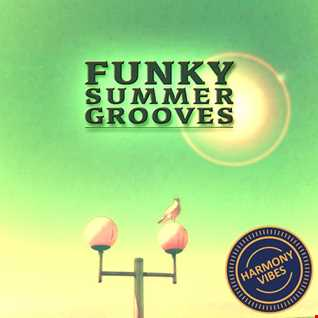 Funky Summer Grooves