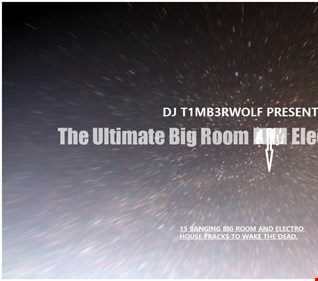 DJ T1MB3RWOLF PRESENTS THE ULTIMATE BIG ROOM ELECTRO HOUSE MIX