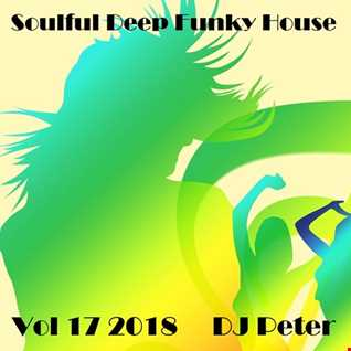 Soulful Deep Funky House Vol 17 2018   DJ Peter