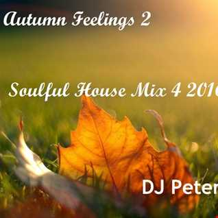 DJ Peter -  Autumn Feelings 2 -  Soulful House Mix 4 2016