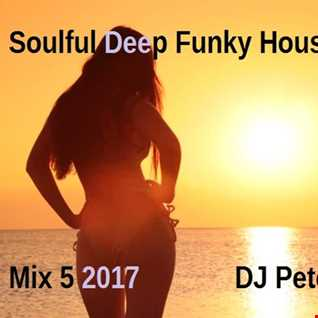 Soulful Deep Funky House Mix 5 2017 - DJ Peter