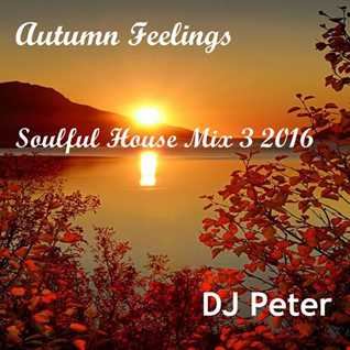 DJ Peter -  Autumn Feelings -  Soulful House Mix 3 2016