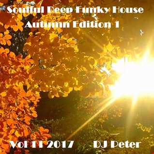 Soulful Deep Funky House Vol 11 2017   DJ Peter
