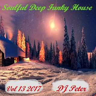Soulful Deep Funky House Vol 13 2017 -  DJ Peter