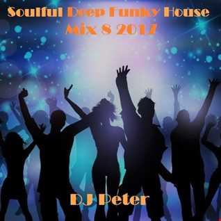 Soulful Deep Funky House Mix 8 2017 -  DJ Peter