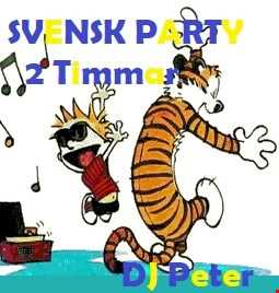 Svensk Party 2 tim (DJ Peter in the mix)