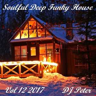Soulful Deep Funky House Vol 12 2017   DJ Peter