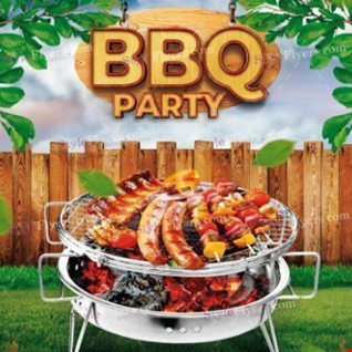 DJ SteveO Presents  Summer BBQ Party Vol 2