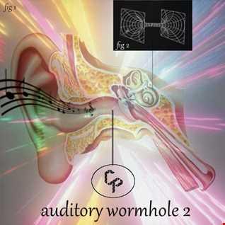 Auditory Wormhole 2