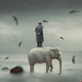 Man meets Elephant...