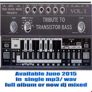 True Skool Transistor Bass 1 Tribute Dj Mix Skynet 320kbs