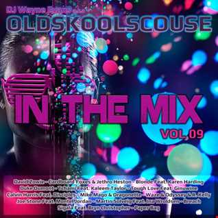 Wayne Evans - In The Mix Vol 09