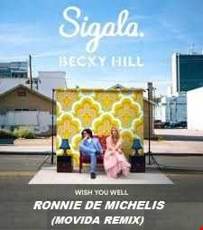 Sigala feat. Becky Hill -  I wish you well  (Ronnie De Michelis Movida Remix)