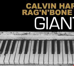 CALVIN HARRIS, RAG'N BON MAN- GIANT ( Ronnie De Michelis Regroove)