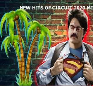 NEW HITS OF CIRCUIT 2020 MIX BIG BOSS DJ