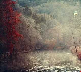 November Rain by Unbedarft