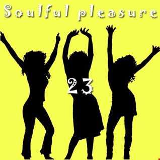 Soulful Pleasure 23