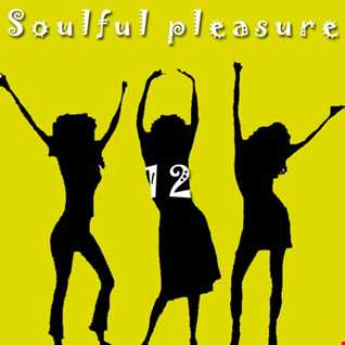 Soulfiul Pleasure 12