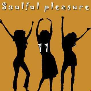 Soulful Pleasure 11