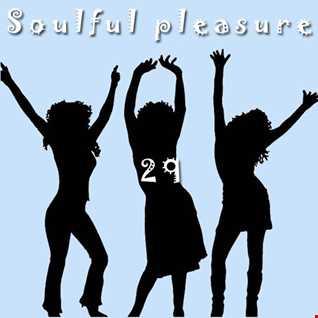 Soulful Pleasure 29
