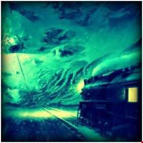 == Bipolar Express ==  Radar & Carmont
