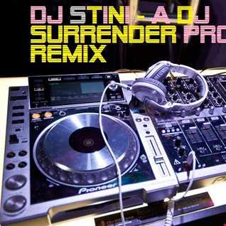 DJStini - night a dj surrender Project Remix