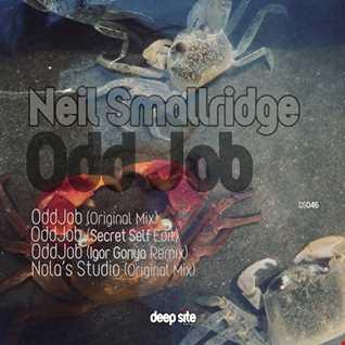 Neil Smallridge - Nola's Studio (clip)