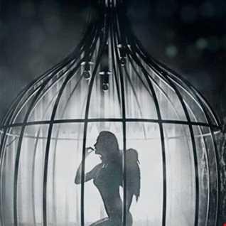 Wings...Liis~Marie & Radar