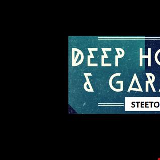 StevieT DEEP HOUSE, ORGAN & GARAGE   MARCH 2014