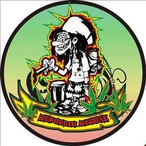 reggae coverup 4