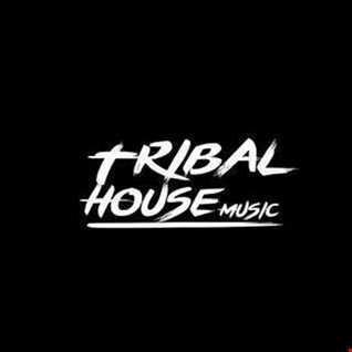 Tribal House Music  FT DJ SteveO