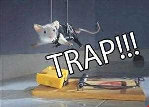 trap mix mar 2013