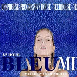 Dendrite   BLEUMIX