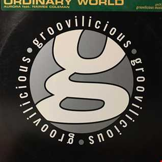 Aurora feat Naimee Coleman - Ordinary World (@ UR Service Version)
