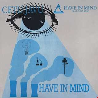 Cetu Javu - Have In Mind (@ UR Service Version)