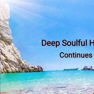 Deep Soulful House (Continues)