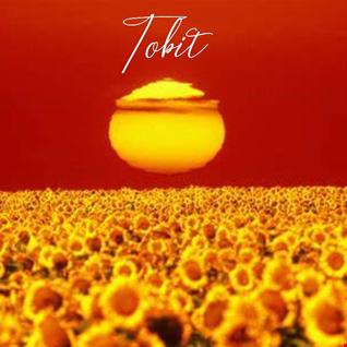 Tobit Presents - Heat Wave Mix 2021