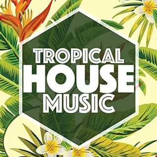DJ MagicFred   IN THE MIX 2021   27   Tropical House Session
